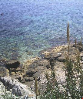 Gespanschaft Split-Dalmatien