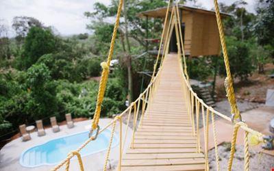 Tarzan Honeymoon Treehouse - ❤️ AC, Pool, Zipline!