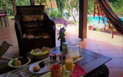 Nest of greenery with breakfast included.