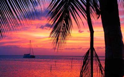 The Sunset Spot