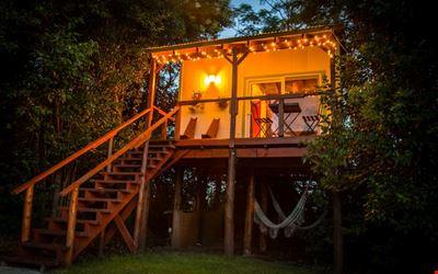 El Nido - Loft Treehouse - The Nest