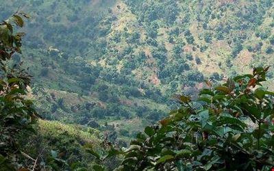 ambangulu cliff lodge